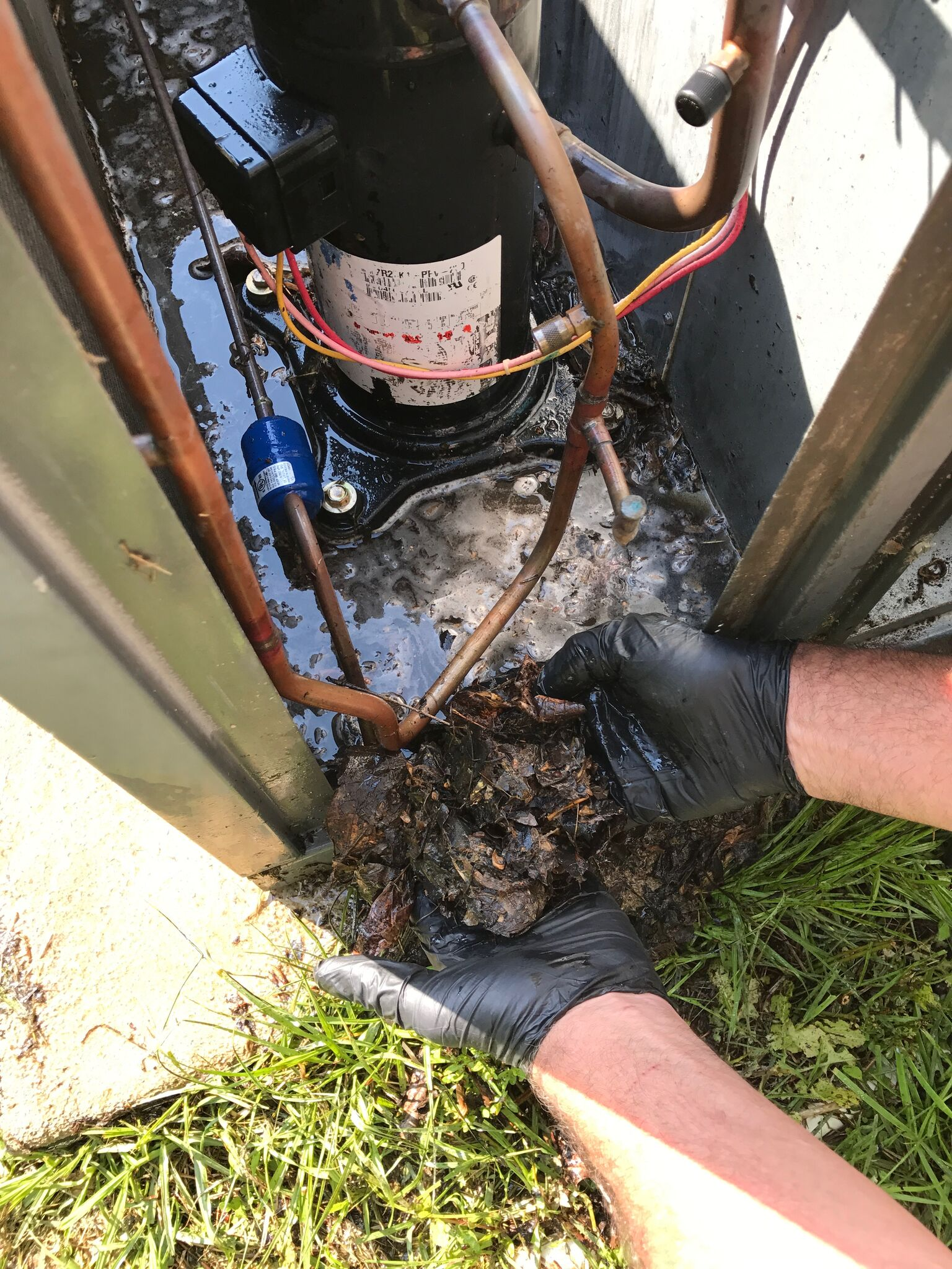 Cleaning HVAC compressor compartment